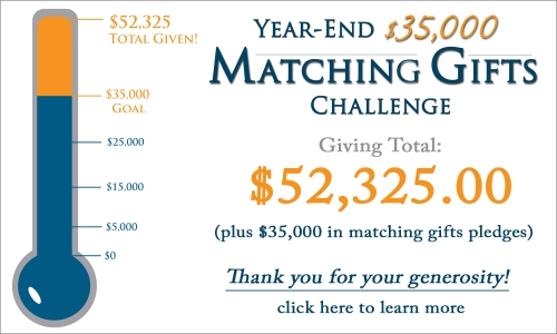 fundraising-matching-gifts-banner-thermo-final